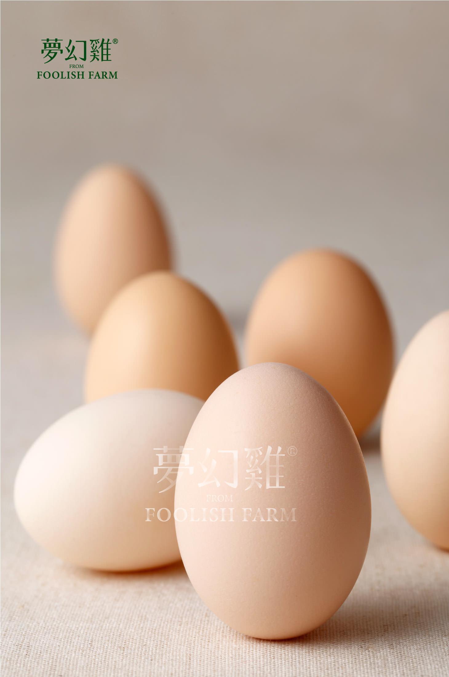 YUR_愚人農場_photo_20150217_1-1.jpg