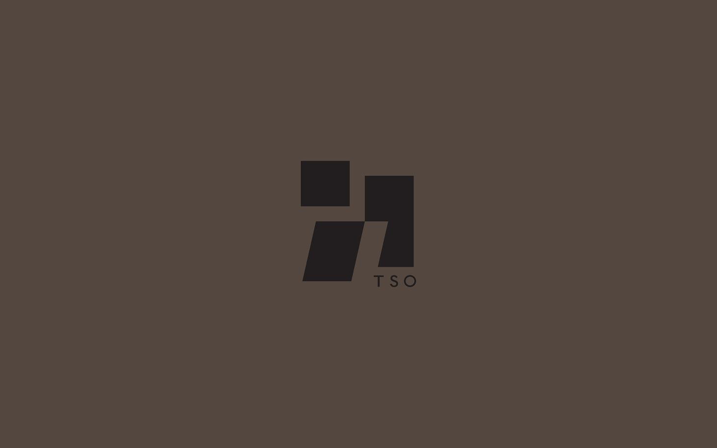 TSO_Logo1.jpg
