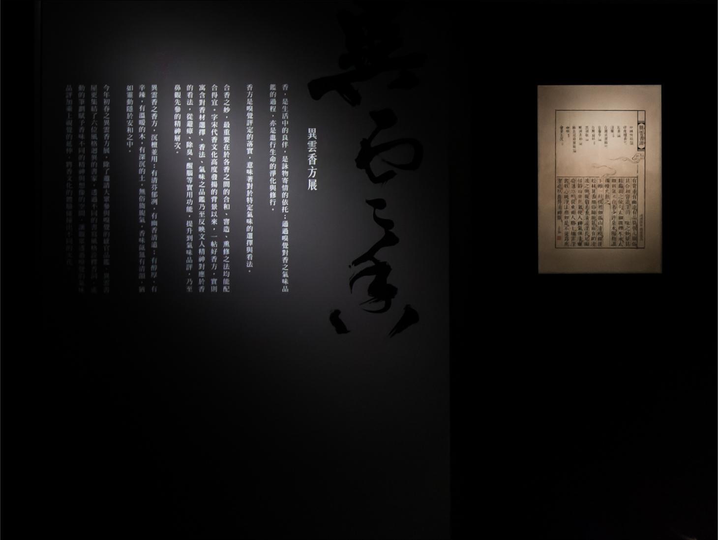 YYA_07.jpg