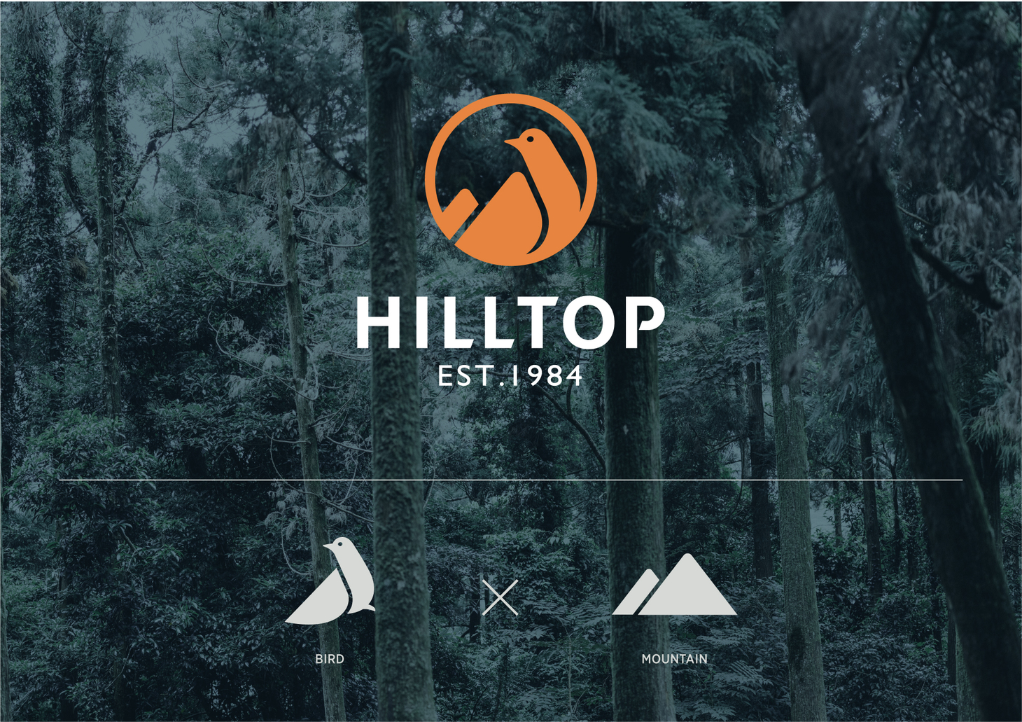 HILL_02.jpg